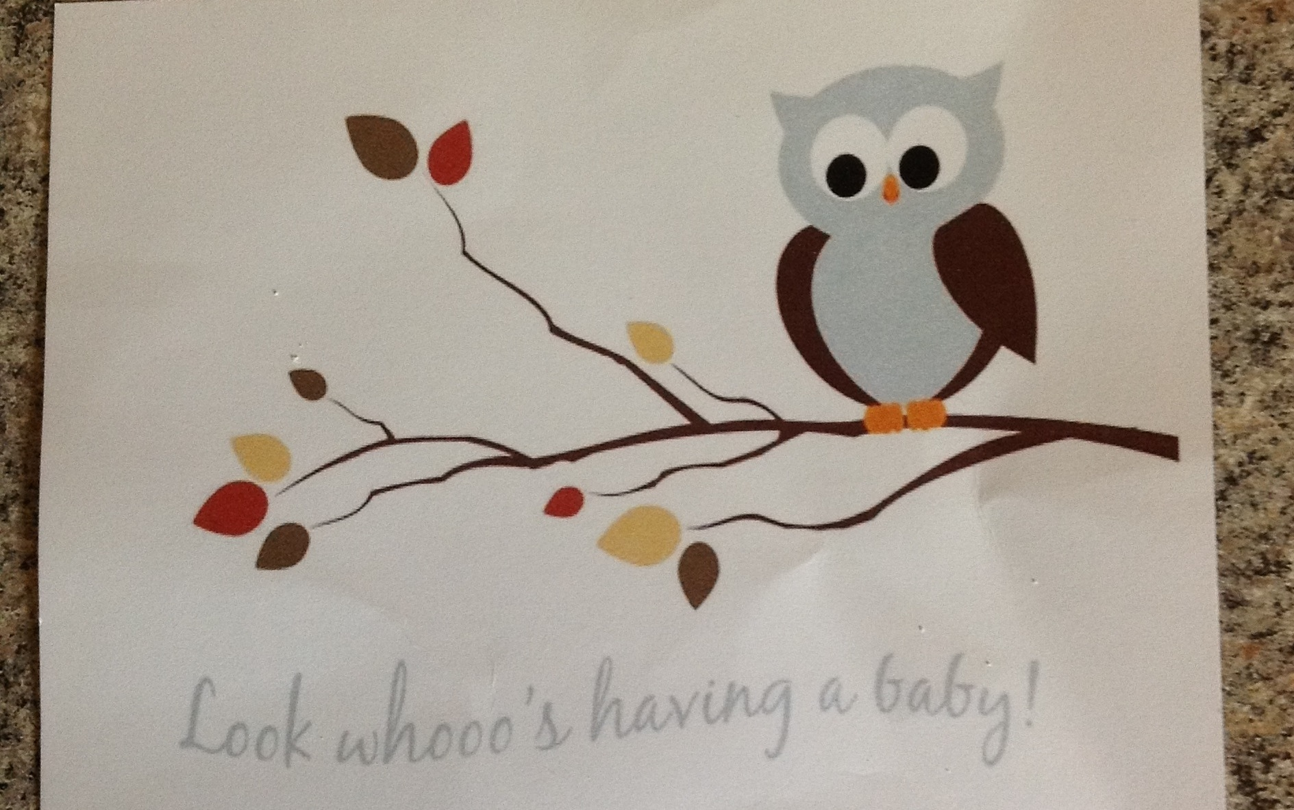 Baby Boy Shower Owl Cake My Crazy Blessed Life