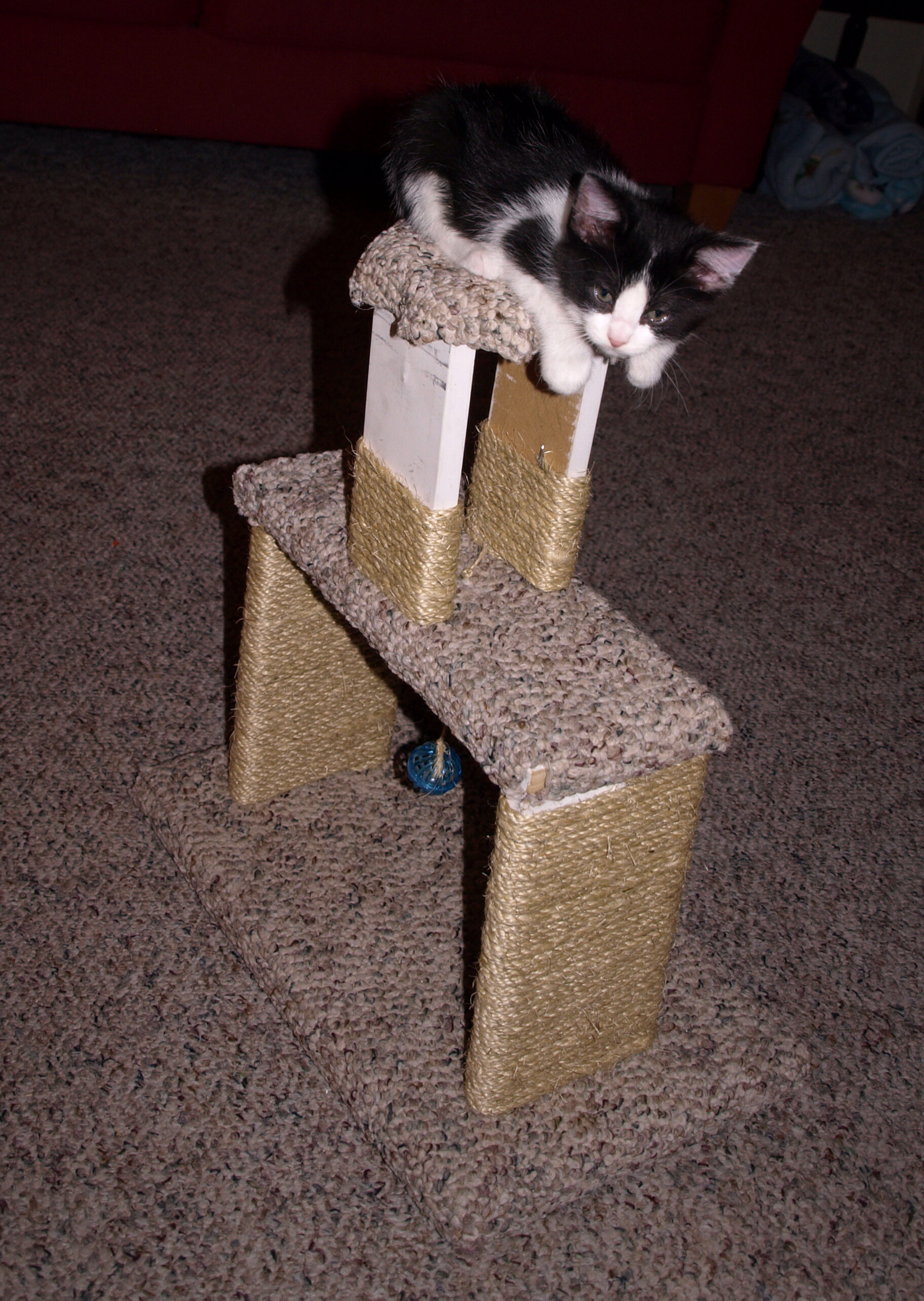 Diy cat tower my crazy blessed life for Do it yourself cat tower